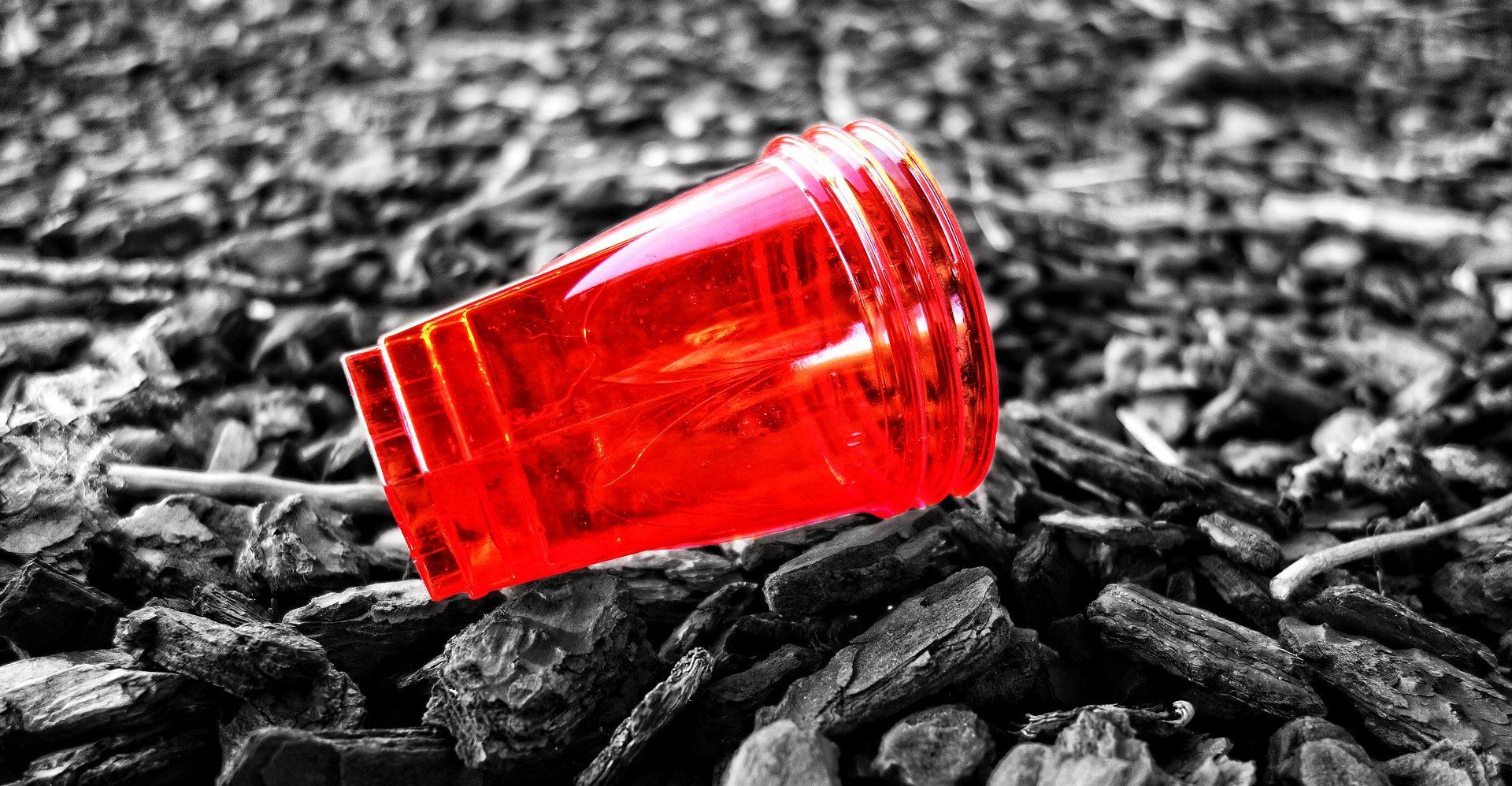 Indija zabranjuje uporabu jednokratne plastike